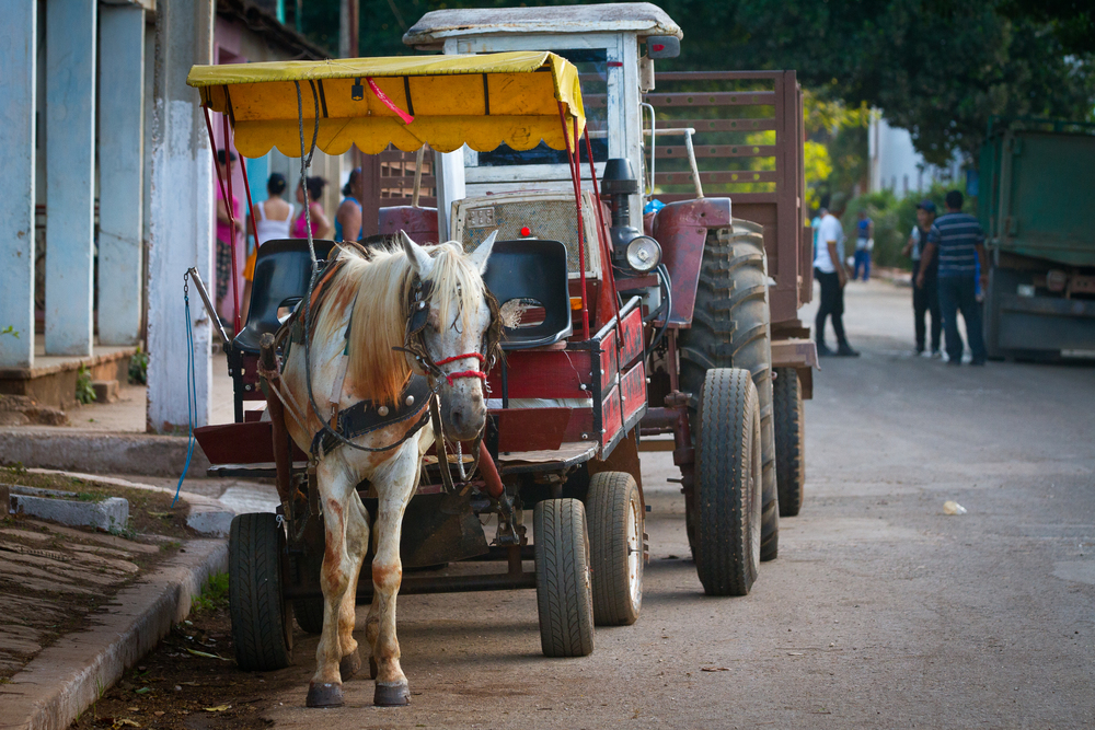 Delivering goods to businesses the Cuban way, Ciego de Avila, Cuba