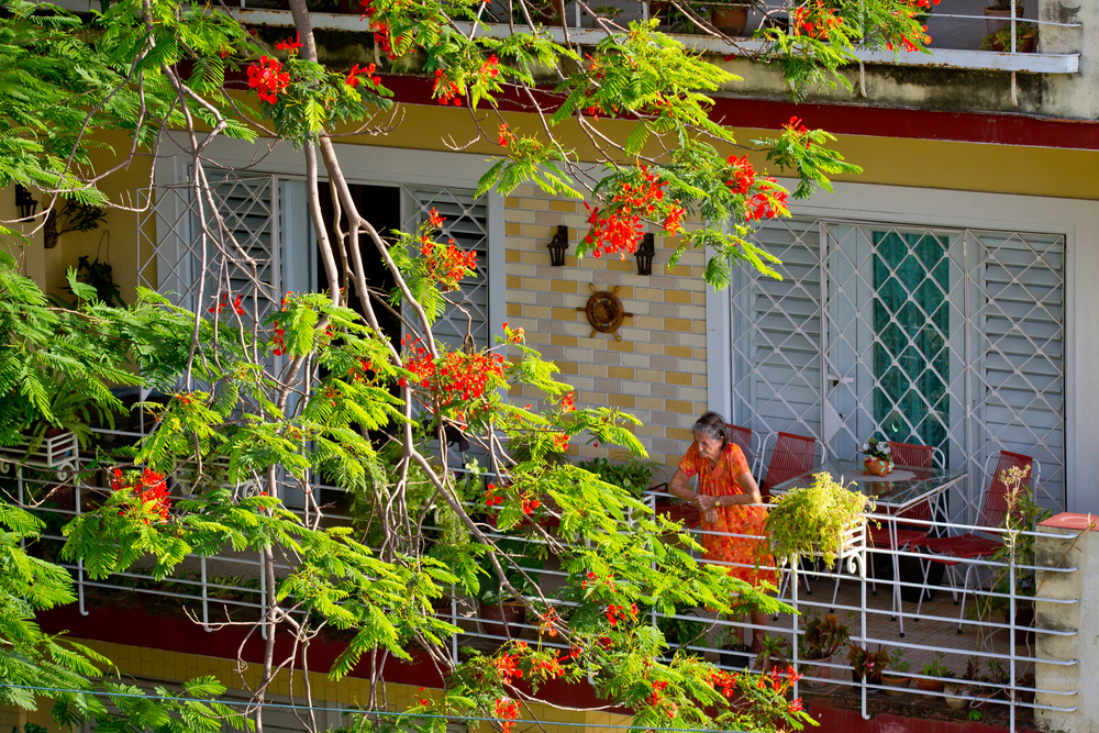 Cubana escaping the Havana heat on her shaded balcony, Havana, Cuba