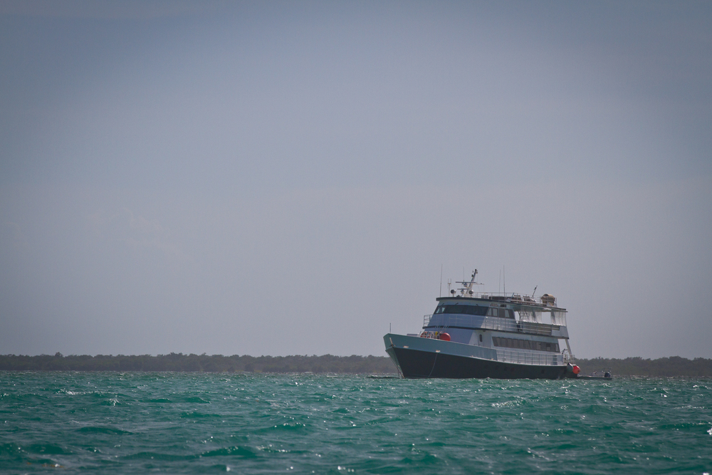 The Avalon Fleet 1 waiting for angler  to return, Cayo Cruz, Cuba