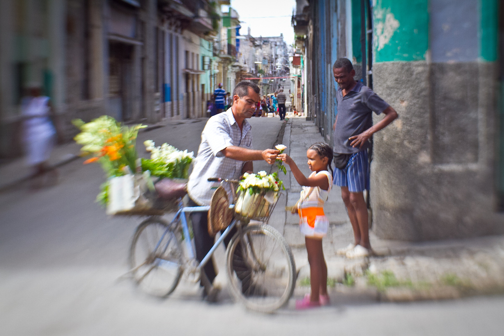Little girl buying a flower, Havana, Cuba