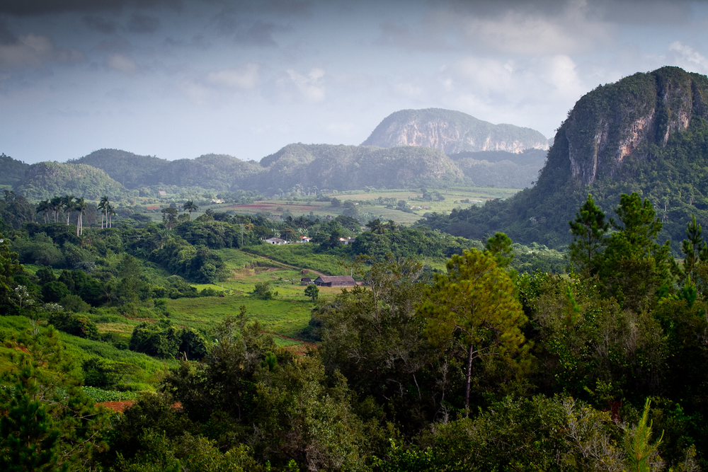 The farmland of Vinales is lush, as you can see from this photo.