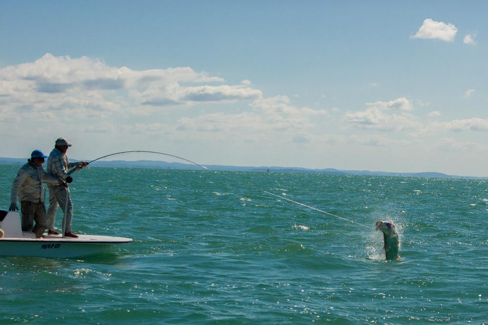 Last jump near the boat