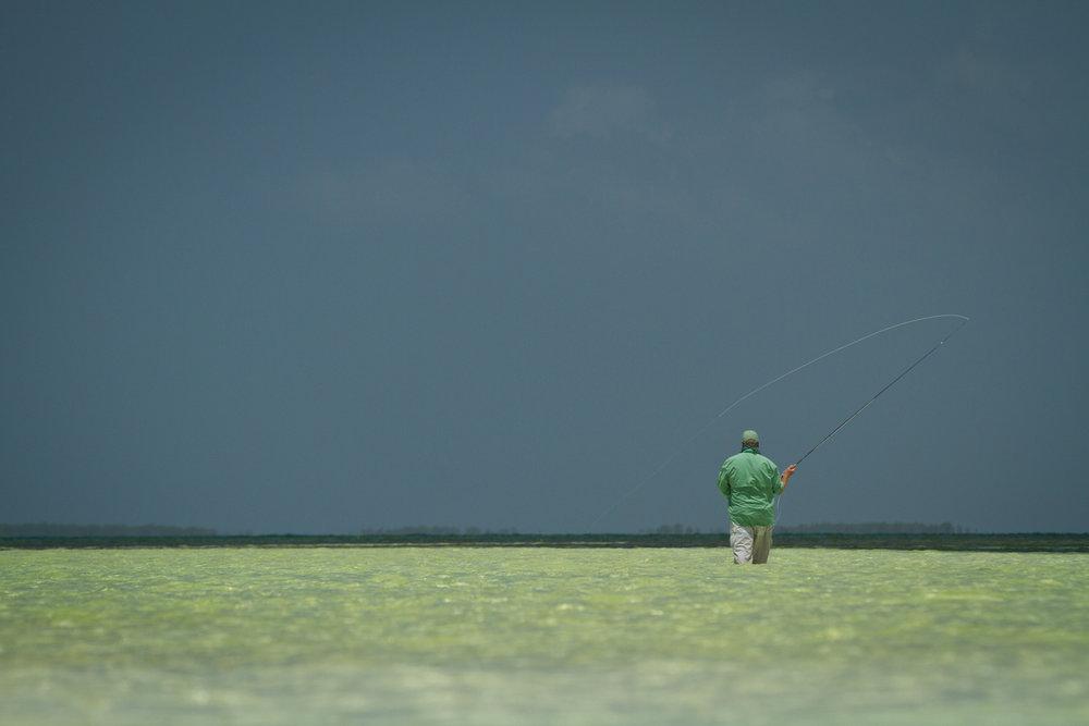 Bonefish flat, Zapata Peninsula, Cuba