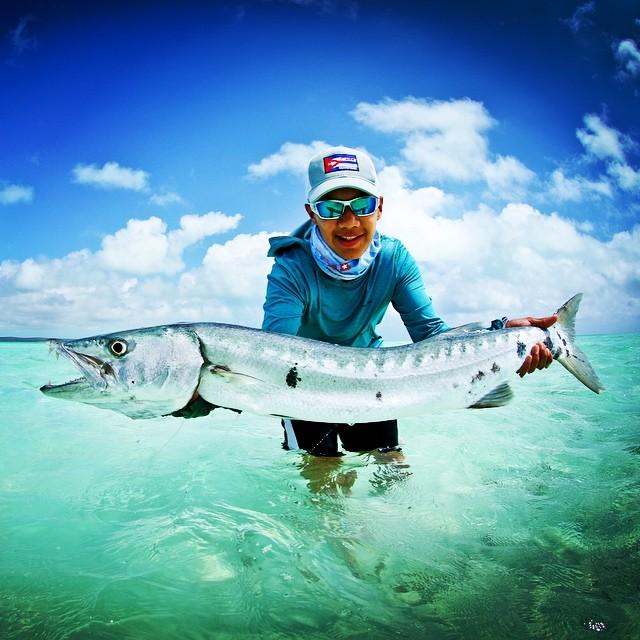 Ooooo Barracuda!! Cayo Cruz Cuba #cubafishingoutfitters#joncovich#flywatertravel #thomas&thomas#galvanreels #flyfishcuba#fishingcuba #cubatravel