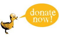 donatenow-2sm.png