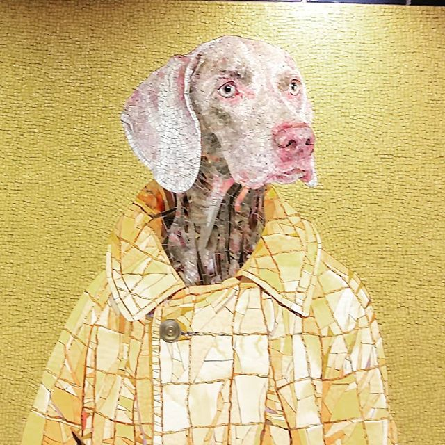 I have been working occasionally at @alleypoweredbyverizon in Chelsea recently, which is just a block from the newly renovated 23rd Street Station where I discovered these recently installed murals by William Wegman.  Called Stationary Figures, these are 4 of the 11 panels with Flo and Topper, two of Wegman's Weimaraners, who are dressed just like the commuters who see them daily.  #mosaic #mosaicart #mosaicartist #publicart #urbanart #dogsofinstagram #dogs #williamwegman #art #design #subway #subwayart #coworking #weimaraner #nyc #thisismynewyork #untethered.co