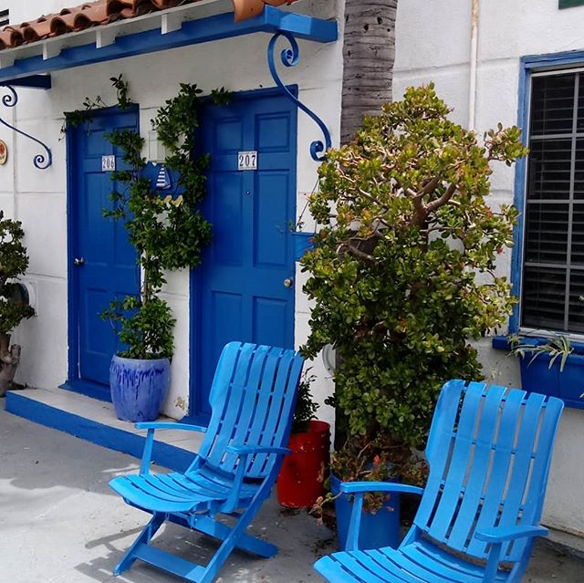 Staying in the sweetest little motel where some bold blue paint and lush plantings give it all kinds of charm (super affordable too). . . . . #designisinthedetails #designinspo #blue #motel #modern #moderndesign #hospitalitydesign #decor #hospitality #boutique #boutiquehotel #Santa Monica #spanishstyle #stuccohouse #inspiration #instaworthy #colorful #colorinspiration #colorinspo #matisse #European
