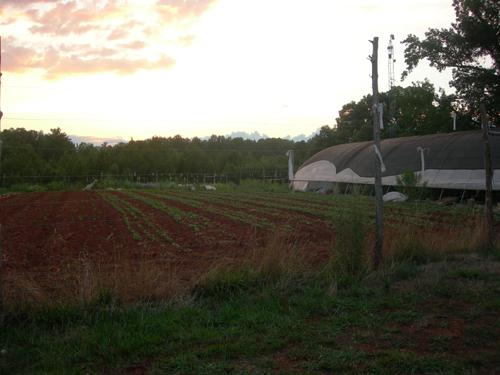 Piedmont Biofuels Farm Incubator