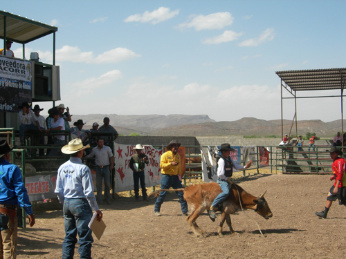 Mexican rodeo