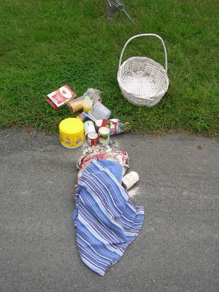 Found picnic
