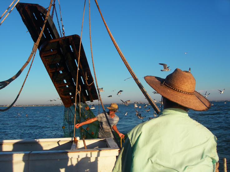 Shrimp Boat Projects / Galveston Bay, Texas