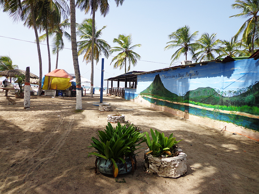 Bienvenido a Playa Parguito