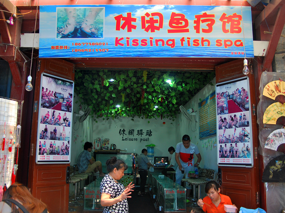 Kissing fish spa
