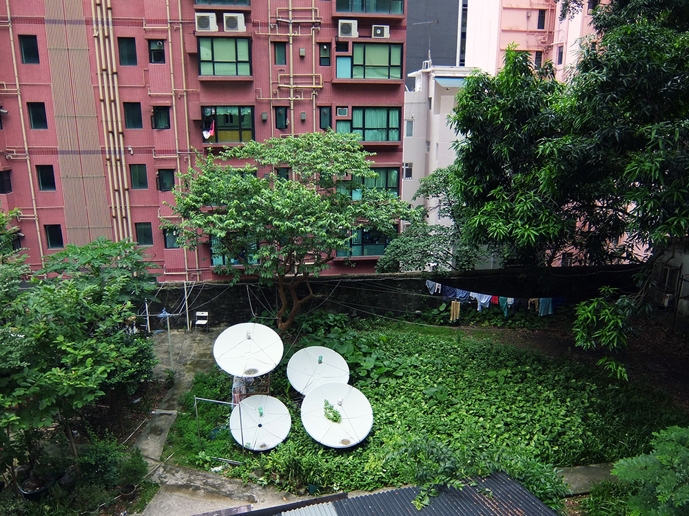 Satellite dish garden