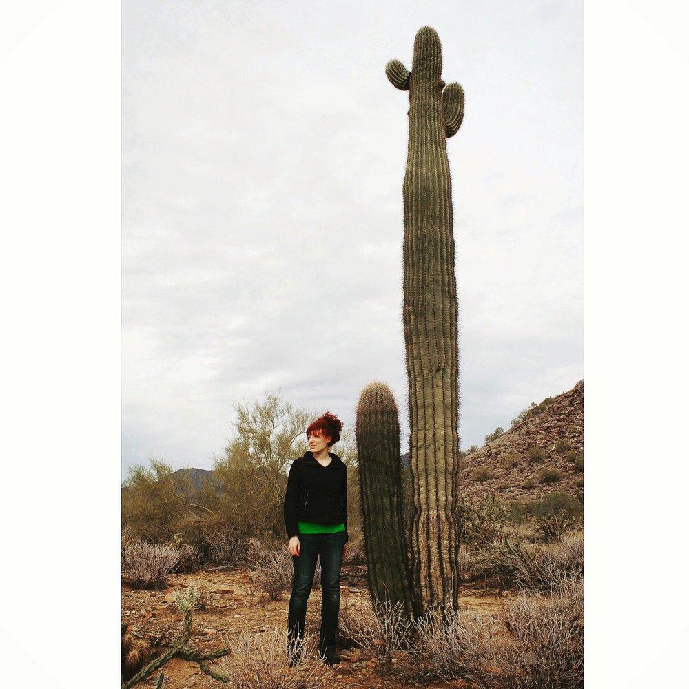 SusannahMira_TaliesinWest_Saguaro.JPG