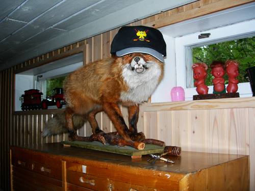 fox in a baseball cap