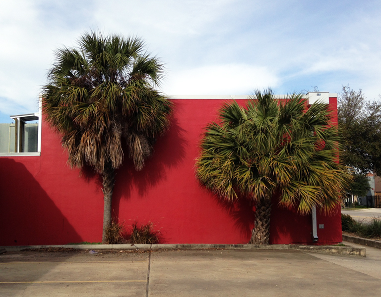 Staged palms of Midtown