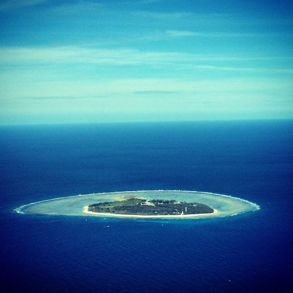 Our true love, Lady Elliot Island