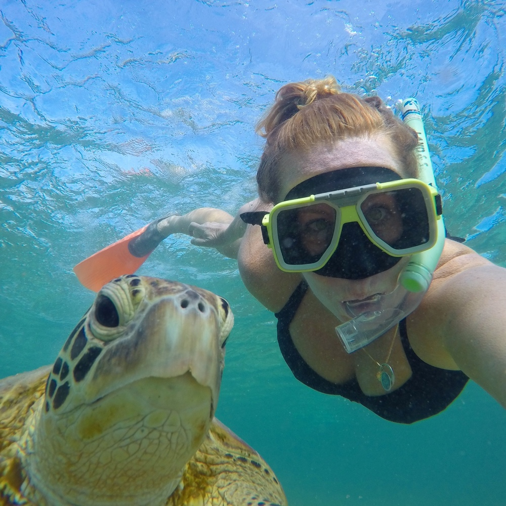 Turtle Time at Lady Elliot Island. One of the best places to visit with kids!