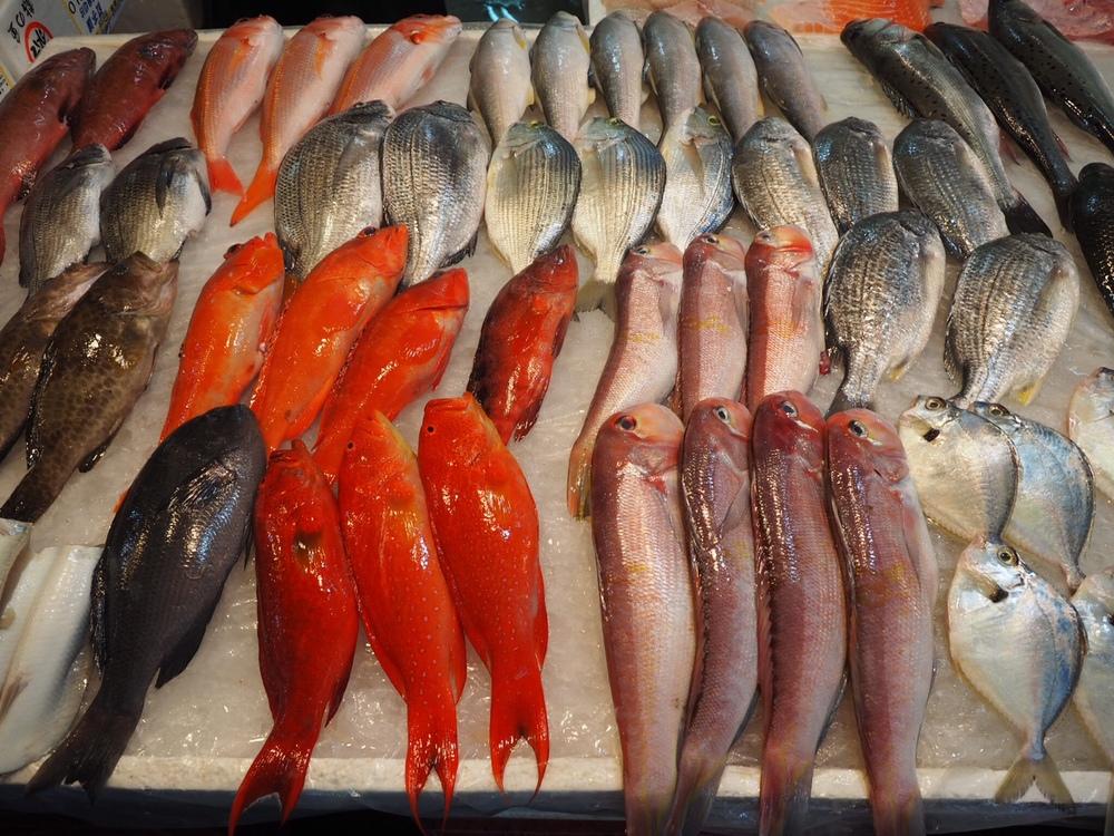 Fresh fish caught around the island