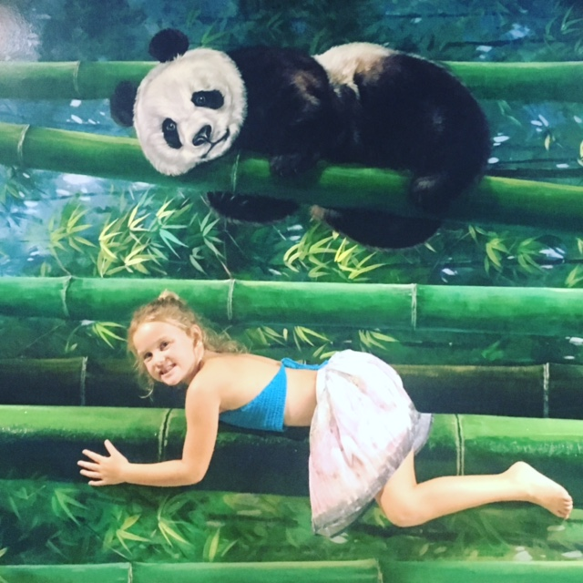 Just hanging with the panda at the Langkawi 3D museum