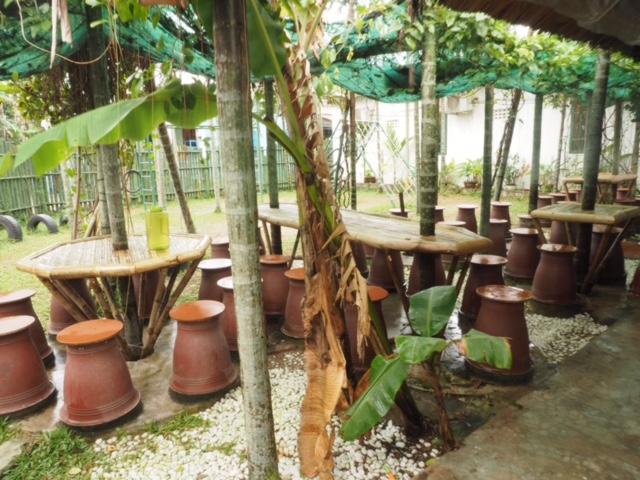 Green Shoots bamboo garden