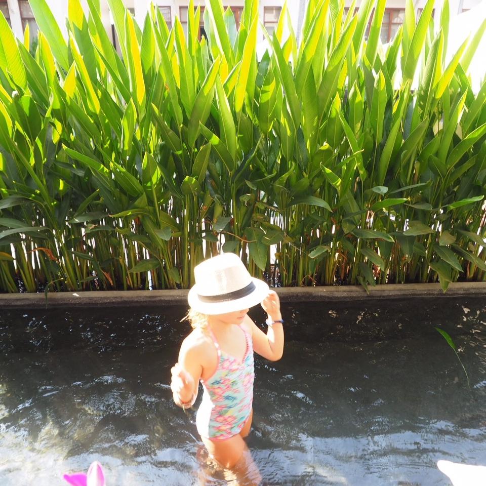 Anantara suite plunge pool - amazing!