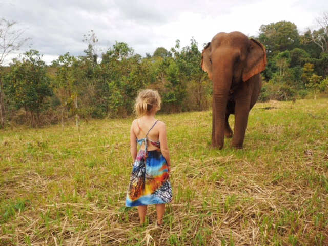 Emmie meeting the beautiful Sambo at the Elephant Valley Project