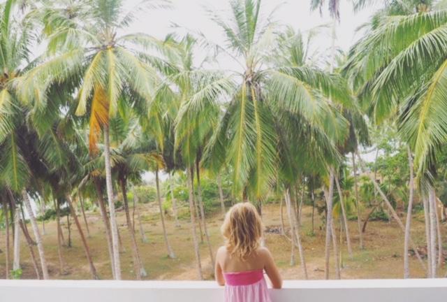 Palms. palms everywhere