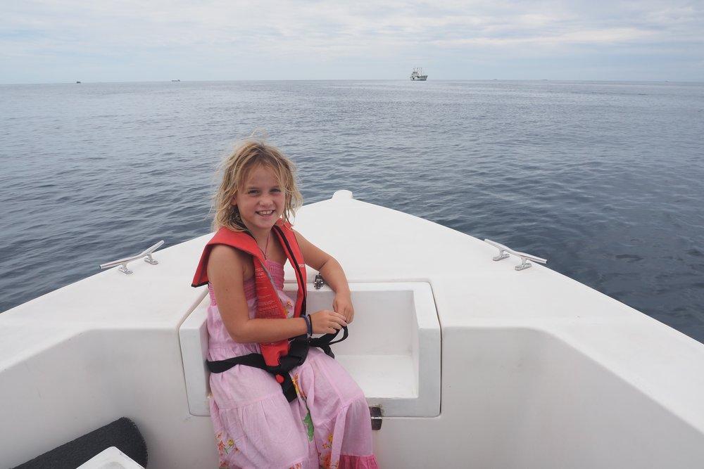 luxury speedboat to the island