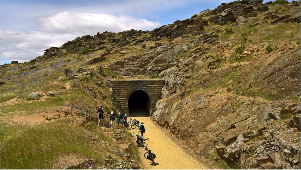 cycling NZ rail trail