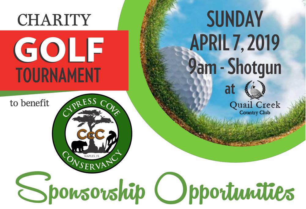 Download .pdf of  sponsorship form