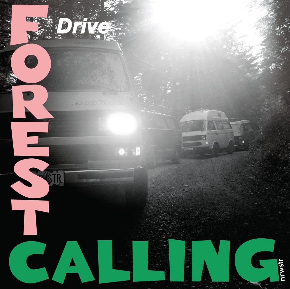 forest-calling.jpg