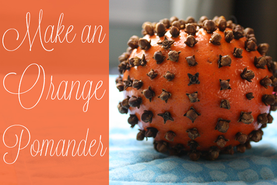 orange-pomander-bstriepe.png