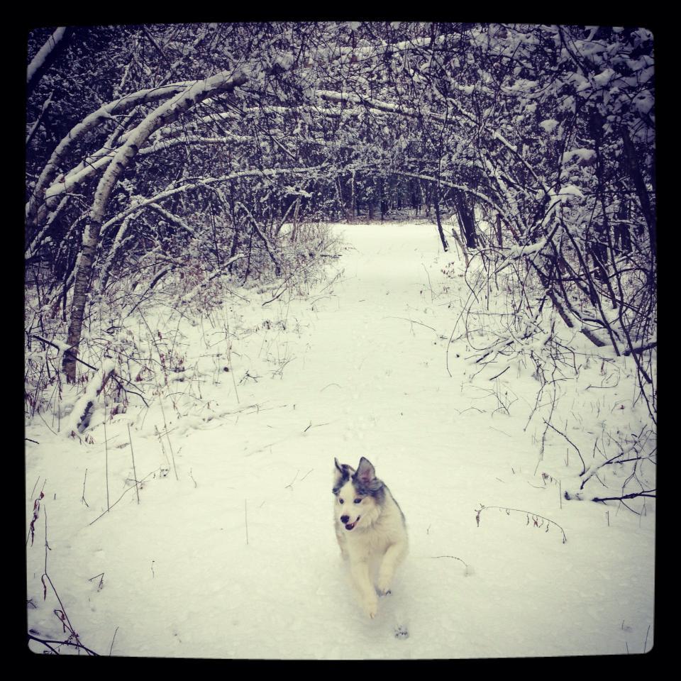 wes in snow.jpg
