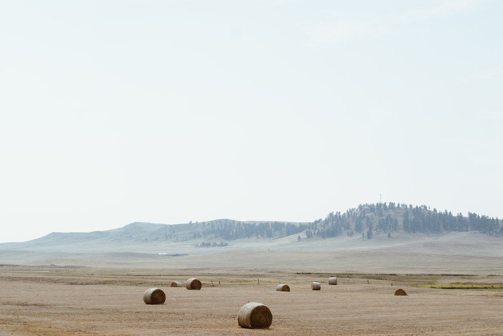 montana - from the highway i