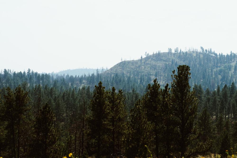 montana - from the highway iii