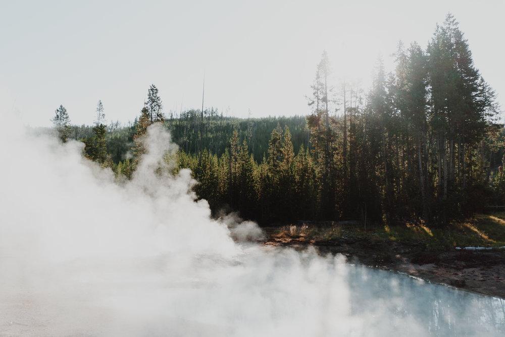 yellowstone - morning mist