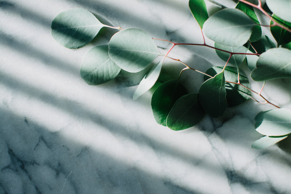 marble + eucalyptus