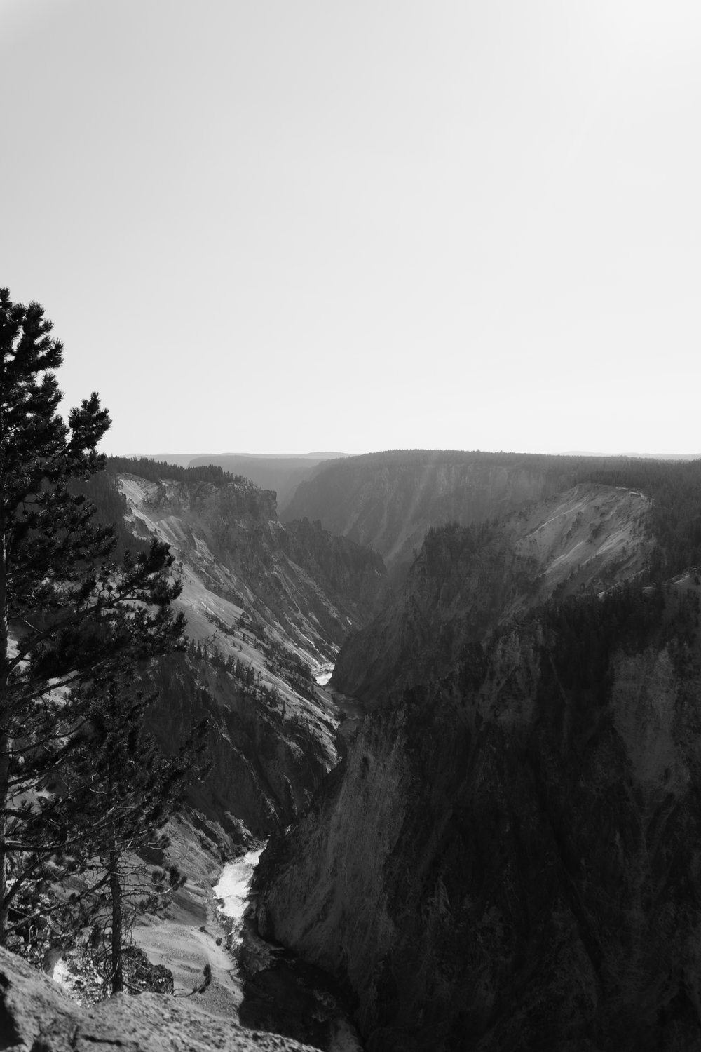yellowstone canyon - b+w