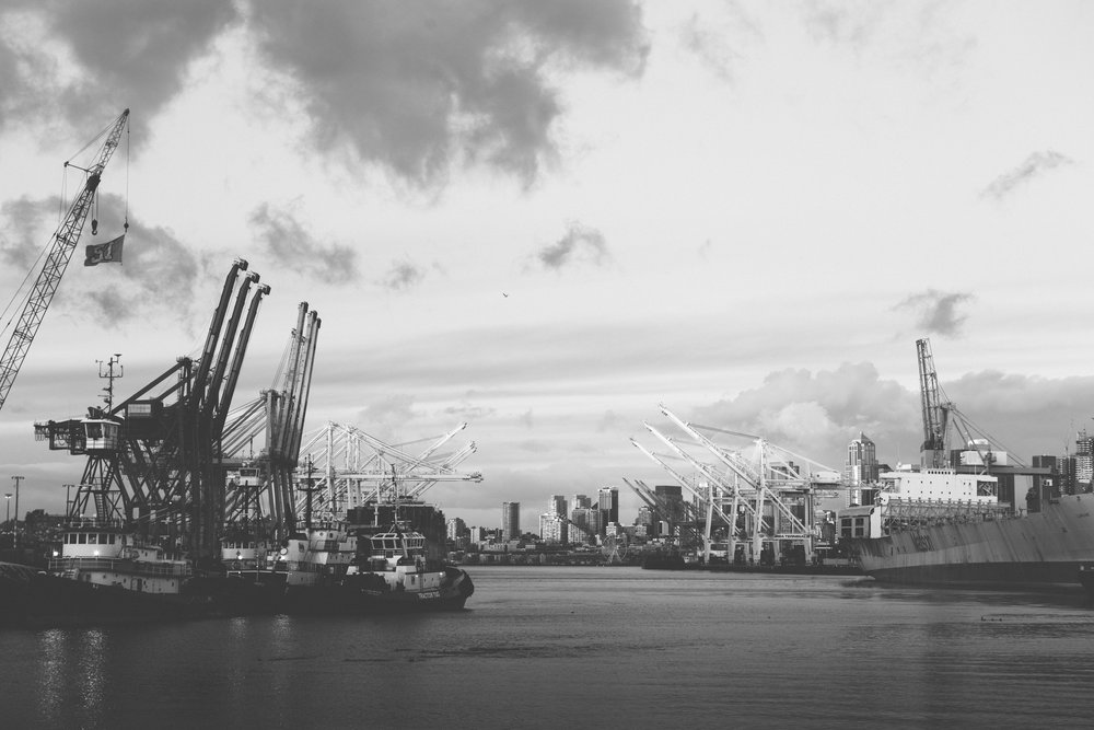 the harbor - b+w