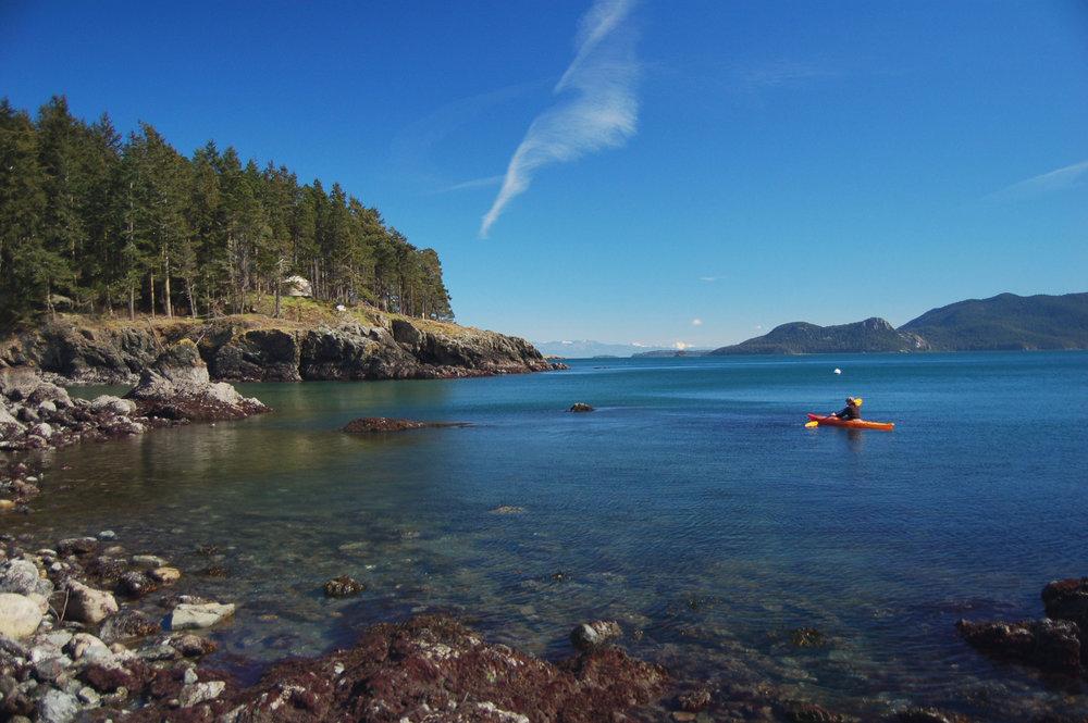 kayaking river copy.jpg
