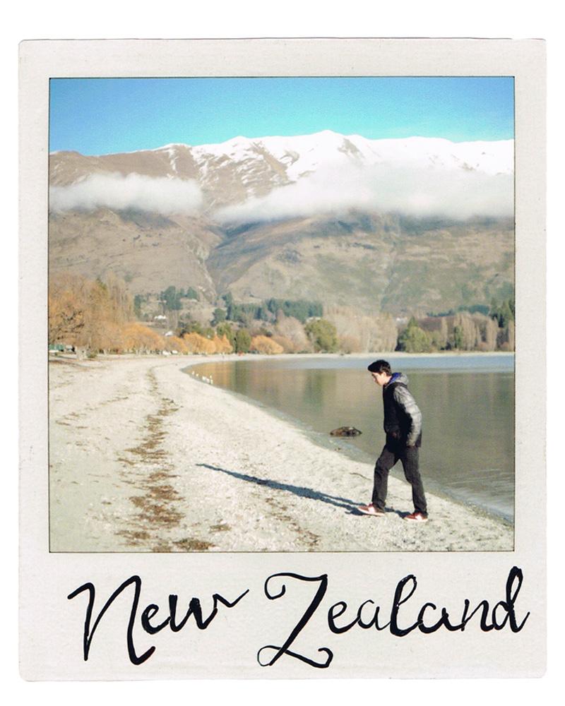 NZ fin.jpg