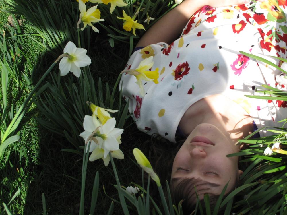 flowerbed sleeping beauty daffodils