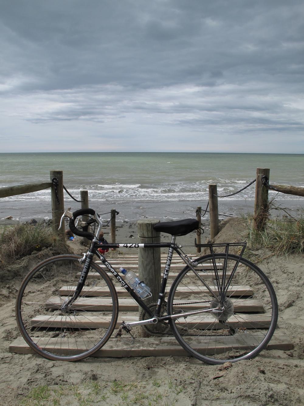 Biking in Nelson NZ