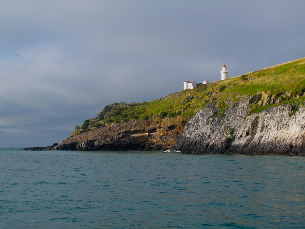 Lighthouse on the Otago Peninsula, NZ