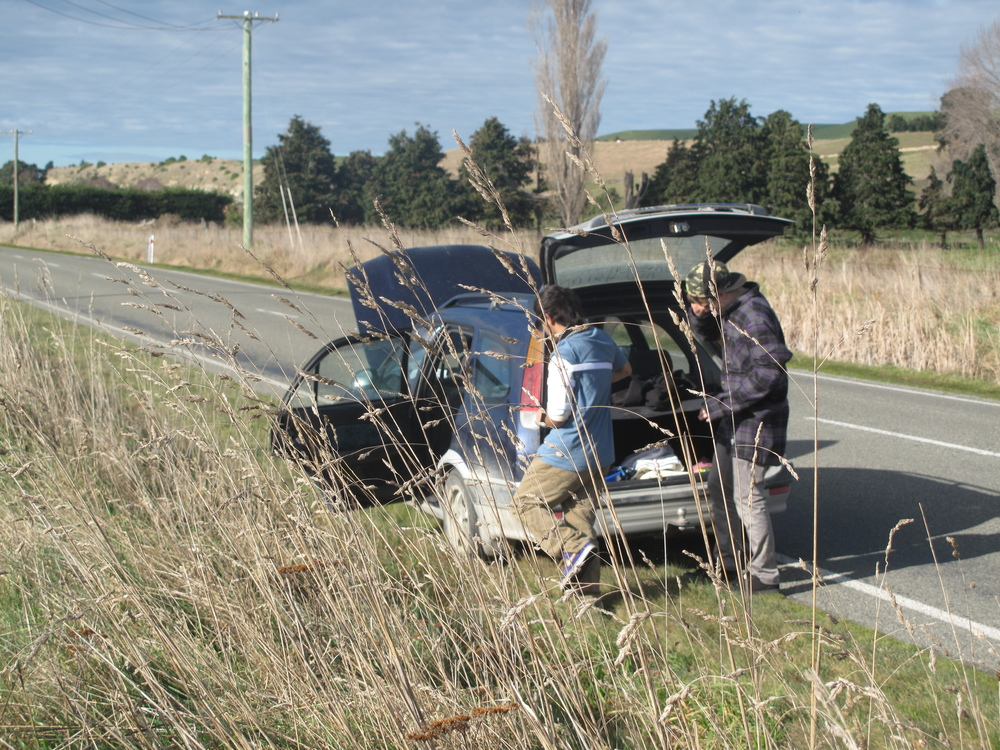 Car broke down at the side of road NZ