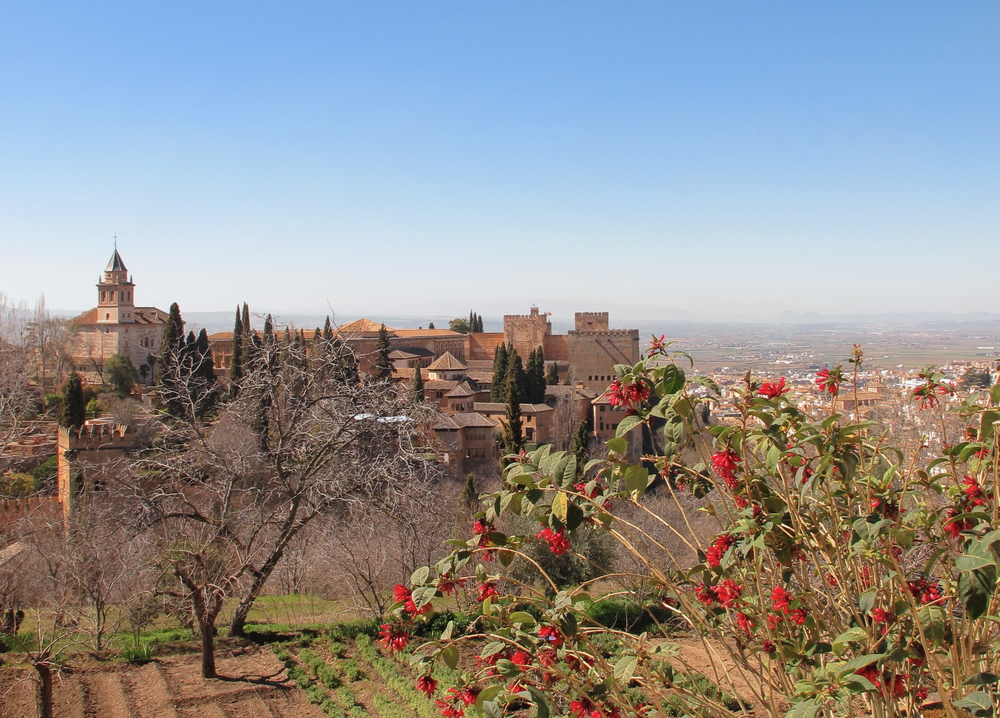 View of the Alhambra in spring with red flowers