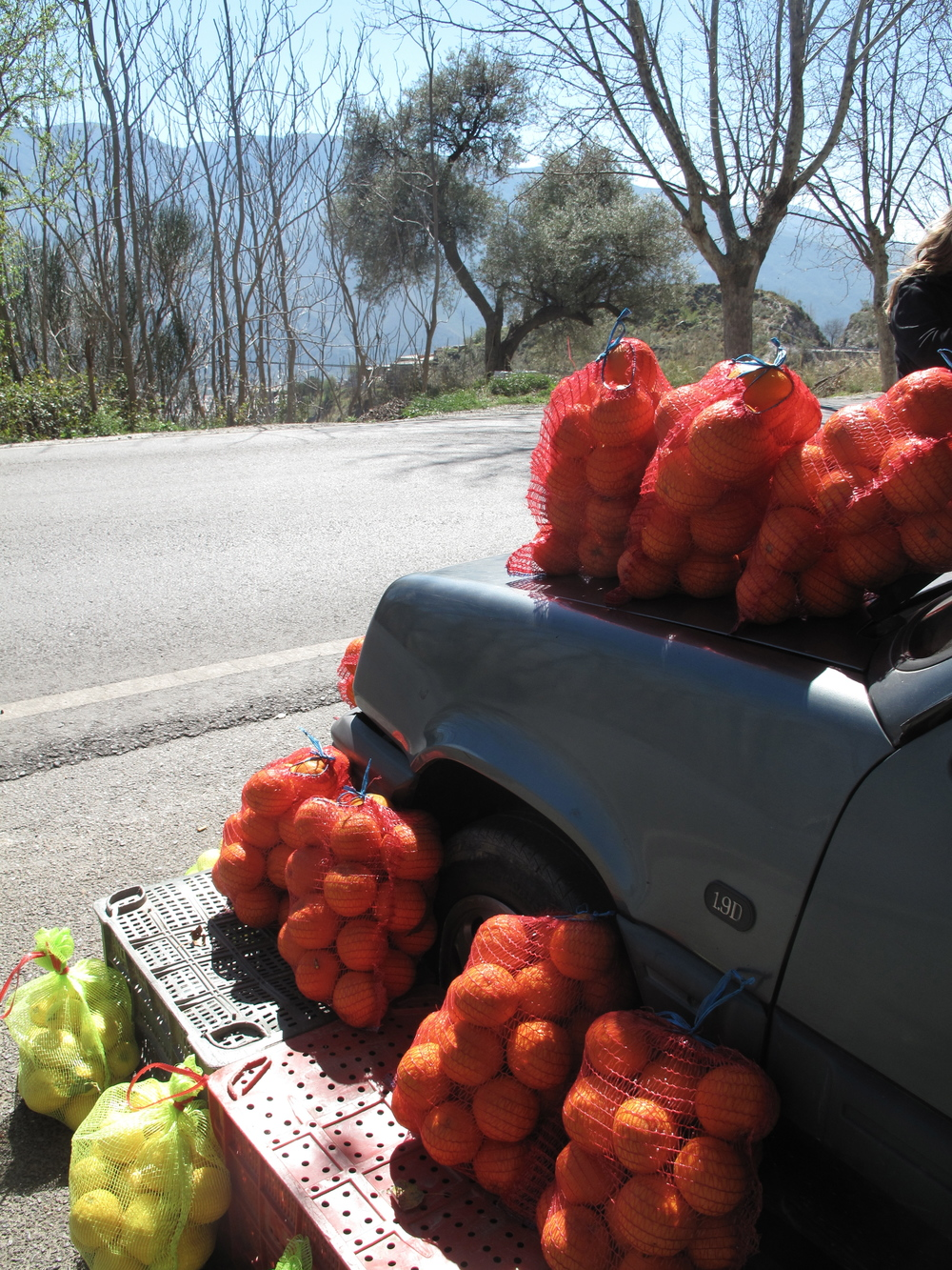 Person selling oranges from the hood of their car, in the mountains of Andulacia