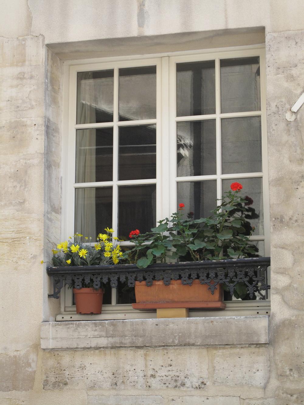 Geranium window planters on the Îles of Paris